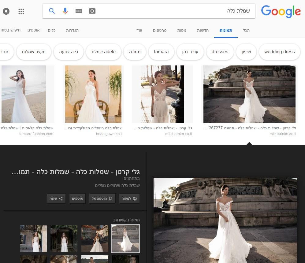 צילום מסך לאחר בחירת תמונה בגוגל תמונות
