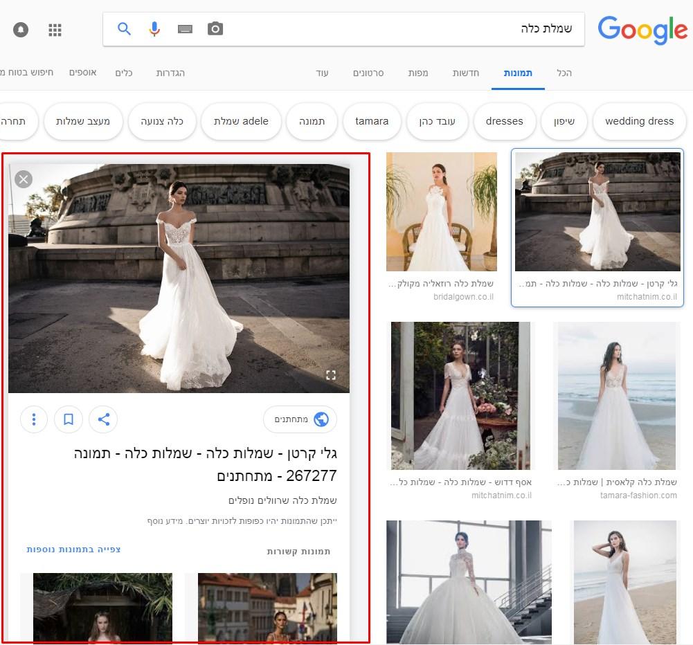 צילום מסך בחירת תמונה בנראות חדשה בגוגל תמונות